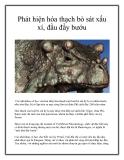 Phát hiện hóa thạch bò sát xấu xí, đầu đầy bướu