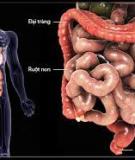 Báo cáo: Trào ngược dạ dày thực quản - Điều trị và xu hướng phát triển thuốc - DS. Thái Khắc Minh