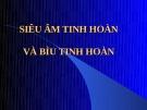 SIÊU ÂM TINH HOÀN VÀ BÌU TINH HOÀN