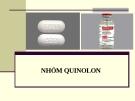 Bài giảng Dược lý chuyên đề - Nhóm Quinolon