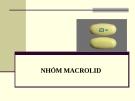 Bài giảng Dược lý chuyên đề - Nhóm Macrolid