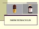 Bài giảng Dược lý chuyên đề - Nhóm Tetracyclin