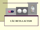 Bài giảng Dược lý chuyên đề: Các Beta-Lactam
