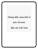 Những điều chưa biết về múa rối nước Đặc sản Việt Nam
