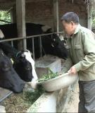 Tài liệu tập huấn kỹ thuật chăn nuôi