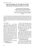 Bước đầu nghiên cứu tác dụng của Tri Mẫu trên sự bài tiết Insulin của đảo tụy cô lập