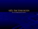 Bài giảng: SIÊU ÂM TINH HOÀN