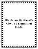 BÁO CÁO THỰC TẬP VỀ KẾT QUẢ KINH DOANH CÔNG TY TNHH MINH LONG I