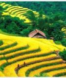 Du lịch khám phá Bản Dền Sa Pa