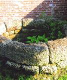 Thượng Hội giữ giếng làng