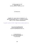 """LUẬN VĂN TỐT NGHIỆP: """" NGHIÊN CỨU KHẢ NĂNG GÂY BỆNH CỦA VI KHUẨN Edwardsiella ictaluri VÀ Aeromonas hydrophila TRÊN CÁ TRA ( Pangasius hypophthalmus)"""""""