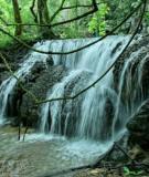 Bí ẩn rừng Minh Hóa