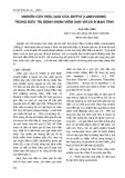 NGHIÊN CỨU HIỆU QUẢ CỦA ZEFFIX (LAMIVUDINE) TRONG ĐIỀU TRỊ BỆNH NHÂN VIÊM GAN VIRUS B MẠN TÍNH