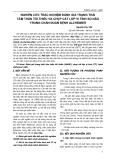NGHIÊN CỨU TRẮC NGHIỆM ĐÁNH GIÁ TRẠNG THÁI TÂM THẦN TỐI THIỂU VÀ CHỤP CẮT LỚP VI TÍNH SỌ NÃO TRONG CHẨN ĐOÁN BỆNH ALZHEIMER
