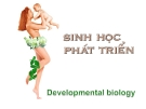 Sự phát triển sinh học