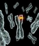 Bài giảng: Công nghệ protein & enzyme - Nguyễn Phú Thọ