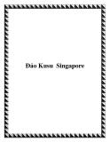 Ðảo Kusu Singapore