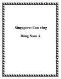 Singapore: Con rồng Đông Nam Á