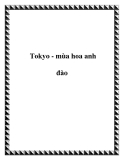Tokyo - mùa hoa anh đào