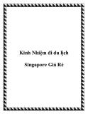Kinh Nhiệm đi du lịch Singapore Giá Rẻ