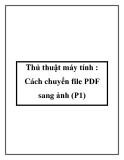 Thủ thuật máy tính : Cách chuyển file PDF sang ảnh