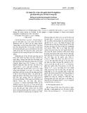 Kỹ thuật bẫy và theo dõi nguồn bệnh Phytophthora gây bệnh thối gốc rễ hồ tiêu ở trong đất