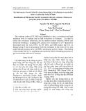 Xác định macker Satt 431 liên kết với gen kháng bệnh rỉ sắt (Phakopsora pachyrhizi Sydow) ở giống đậu tương ĐT2000