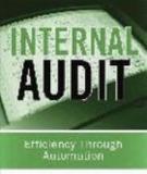 INTERNAL AUDIT: Efficiency through Automation