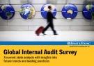 Global Internal Audit Survey