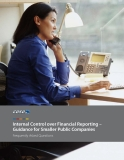 Internal Control over Financial Reporting – Guidance for Smaller Public Companies