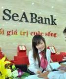 Luận văn:Xây dựng chiến lược phát triển Ngân hàng SeABank đến năm 2015