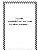Phân tích chiến lược kinh doanh của bia Hà Nội HABECO