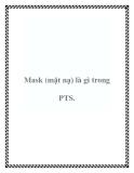 Mask (mặt nạ) là gì trong PTS.