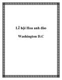 Lễ hội Hoa anh đào Washington D.C
