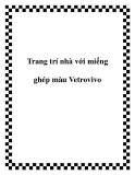 Trang trí nhà với miếng ghép màu Vetrovivo