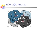 Hóa học Protid