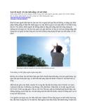 Lợi ích tuyệt vời của ánh nắng với sức khỏe