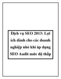 Dịch vụ SEO 2013: Lợi ích dành cho các doanh nghiệp nhỏ khi áp dụng SEO Audit mức độ thấp