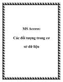 MS Access: Các đối tượng trong cơ sở dữ liệu