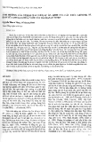 """Báo cáo """" ảnh hưởng của Stress Naci lên sự ổn định của cấu trúc Genome tế bào lúa Oryza sativa nuôi cấy dài hạn In Vitro """""""