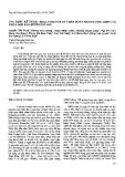"""Báo cáo """"ứng dụng kỹ thuật real - time PCR để chẩn đoán nhanh cúm A/H5N1 và virus hợp bào đường hô hấp """""""