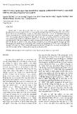 """Báo cáo """" Thiết kế vector biểu hiện gen độc tố miễn dịch Anti-her2-melittin (Hermel) trong E. Coli """""""