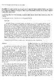 """Báo cáo """" Nghiên cứu khả năng phân huỷ sinh học hydrocacbon thơm đa vòng của một số chủng vi khuẩn phân lập từ Bioreactor xử lý chất nhiễm độc hoá học """""""