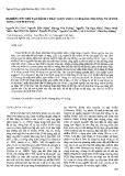 """Báo cáo """"Nghiên cứu chế tạo bộ kit phát hiện virus SV40 bằng phương pháp PCR lồng (nested PCR) """""""