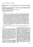 """Báo cáo """"Phân tích gen Pi – ta kháng bệnh đạo ôn ở một số giống lúa (Oryza sativa L.) """""""
