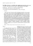 """Báo cáo """"Xác định đa dạng vi nấm trong đất nhiễm chất độc hoá học tại Đà Nẵng dựa trên phân tích đa hình cấu trúc sợi đơn gen 18S rRNA """""""