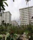 Cần tiêu chí gì để được mua nhà ở thu nhập thấp?