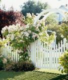 Ngôi nhà phong cách đồng quê với cổng gỗ