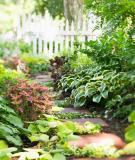 Không gian thoáng mát cho ngoại thất nhà vườn