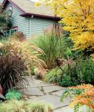 Những sắc màu nghệ thuật trong decor vườn nhà